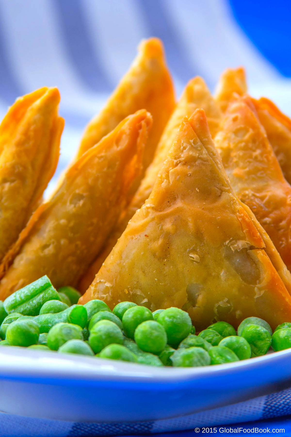 CHICKEN AND LAMB SAMOSA (17)
