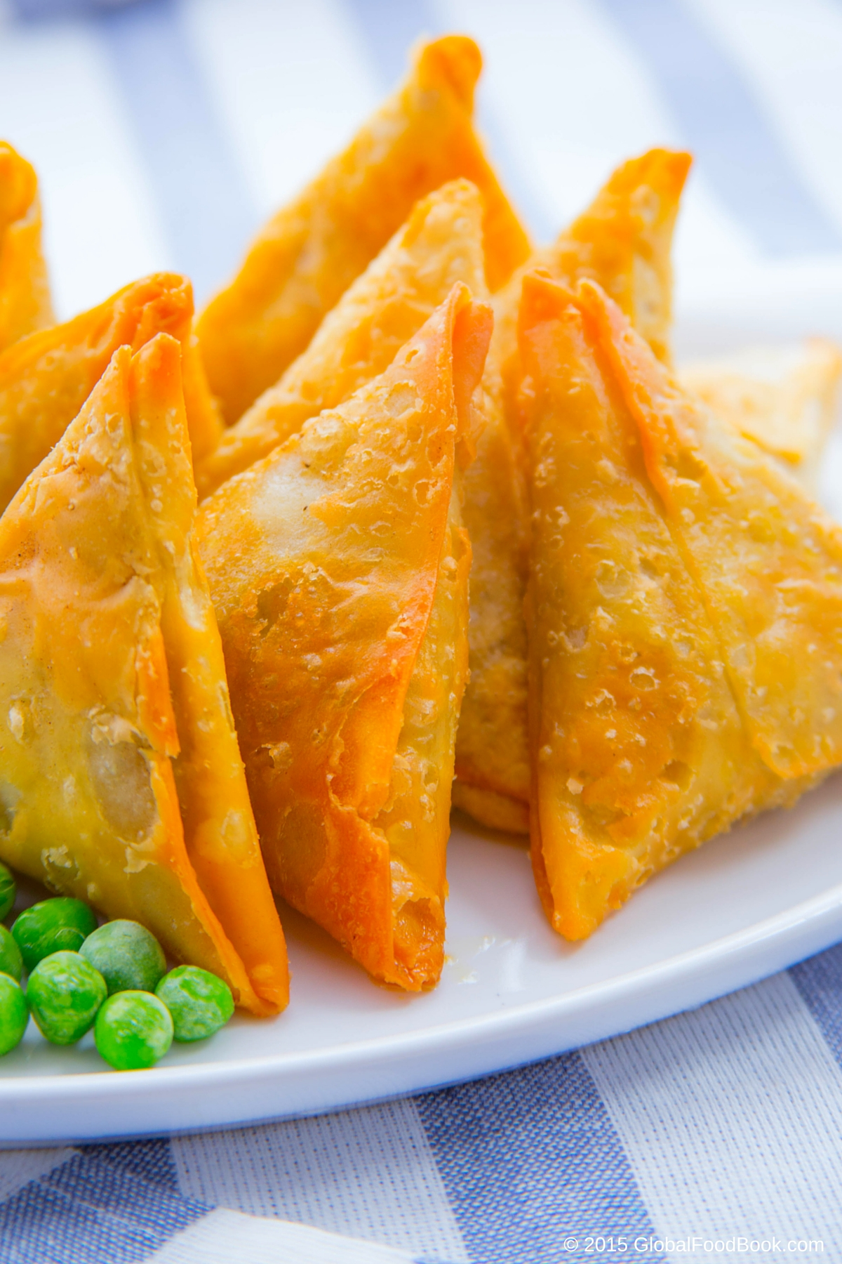 CHICKEN AND LAMB SAMOSA (18)