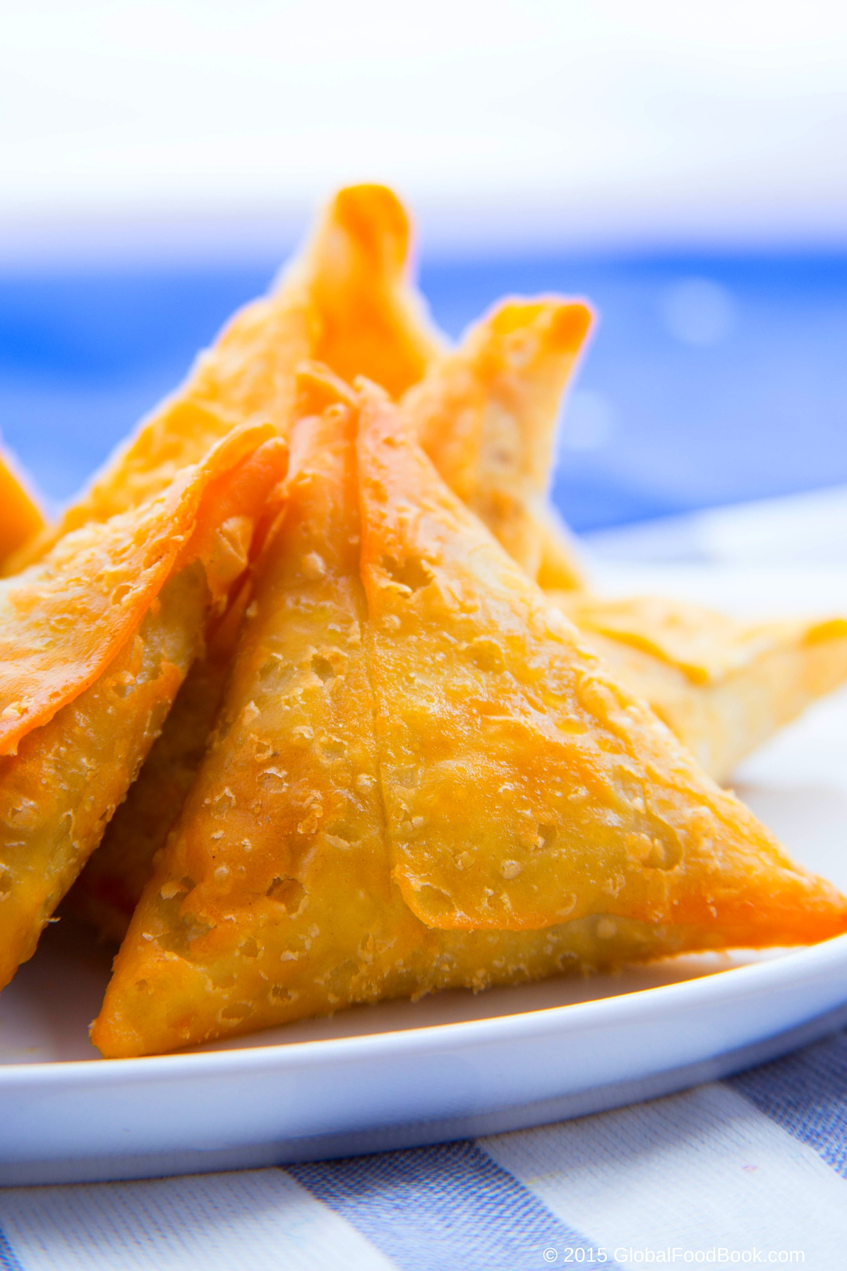 CHICKEN AND LAMB SAMOSA (6)