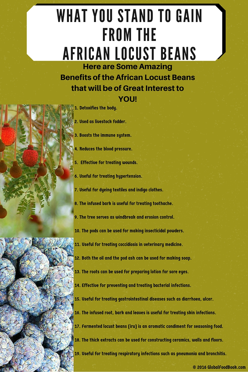 WHAT YOU STAND TO GAIN FROM THE AFRICAN LOCUST BEANS
