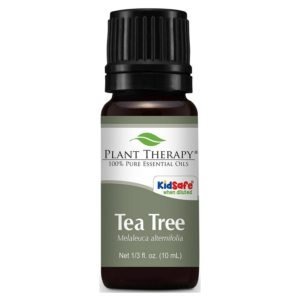 Plant Therapy Tea Tree Essential Oil