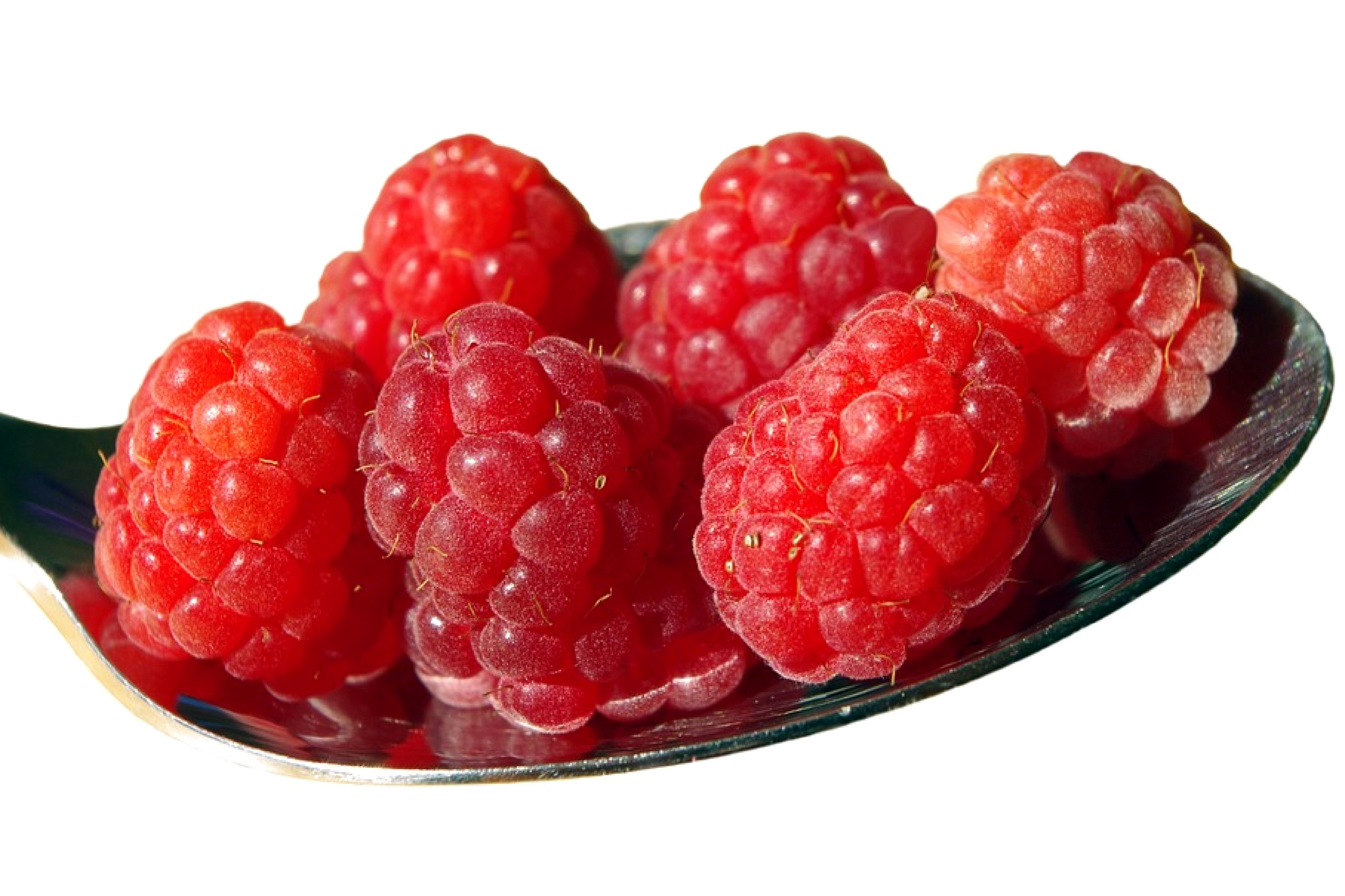 are raspberry ketones good for weight loss?